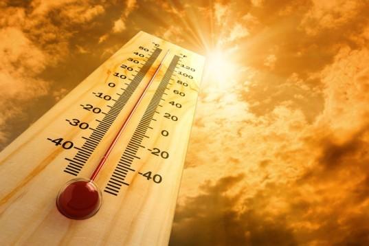 ¡El calor y la humedad han comenzado su infamia después de una primavera agradable y larga este aZo!